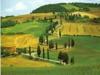 Прогулка по городу.  Тоскана - пожалуй, сама итальянская из всех провинций Италии, именно здесь...